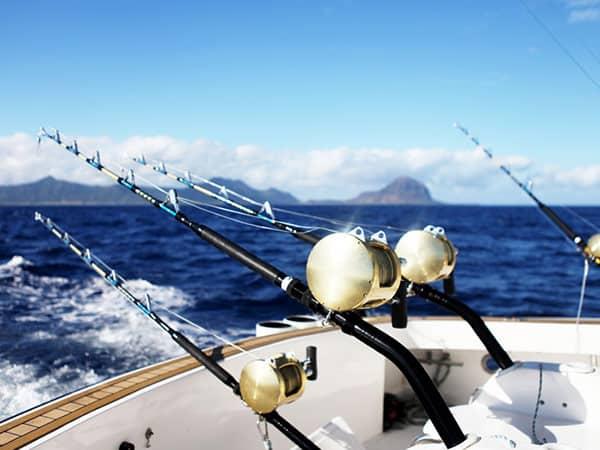 The best Fishing Equipment